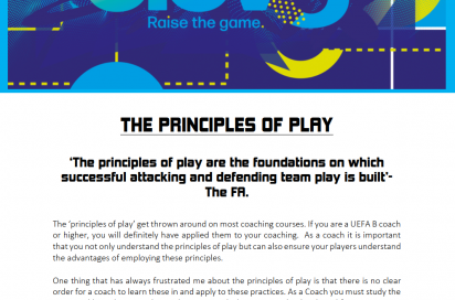 THE PRINCIPLES OF PLAY